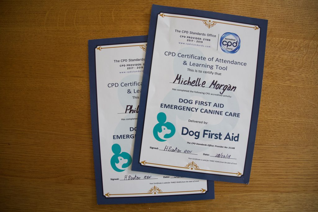 Dog First Aid Certificates for Bristol Dog Walkers