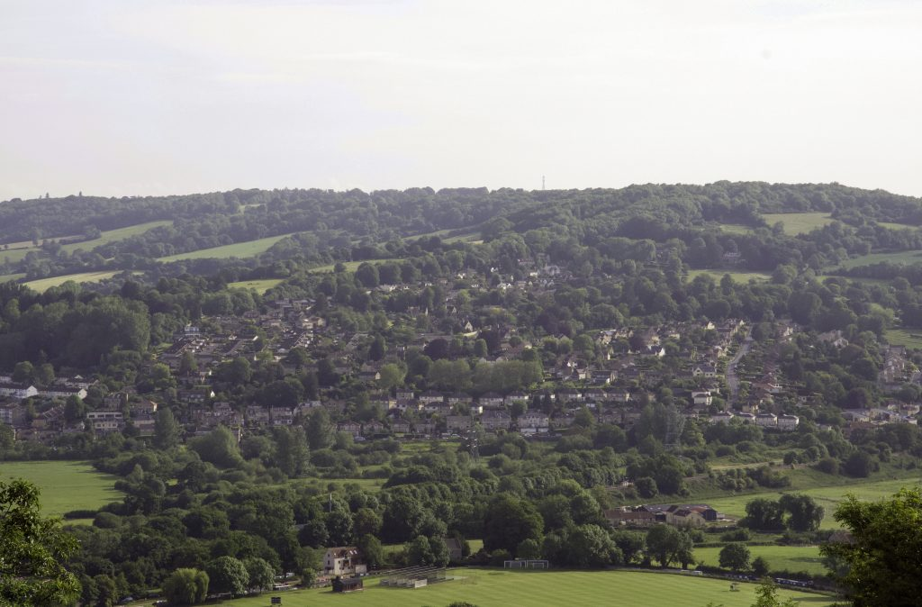 Bathampton Down dog walk views