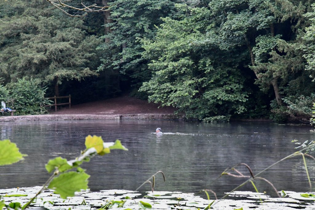 Wild Swimming at Abbots Pool Bristol