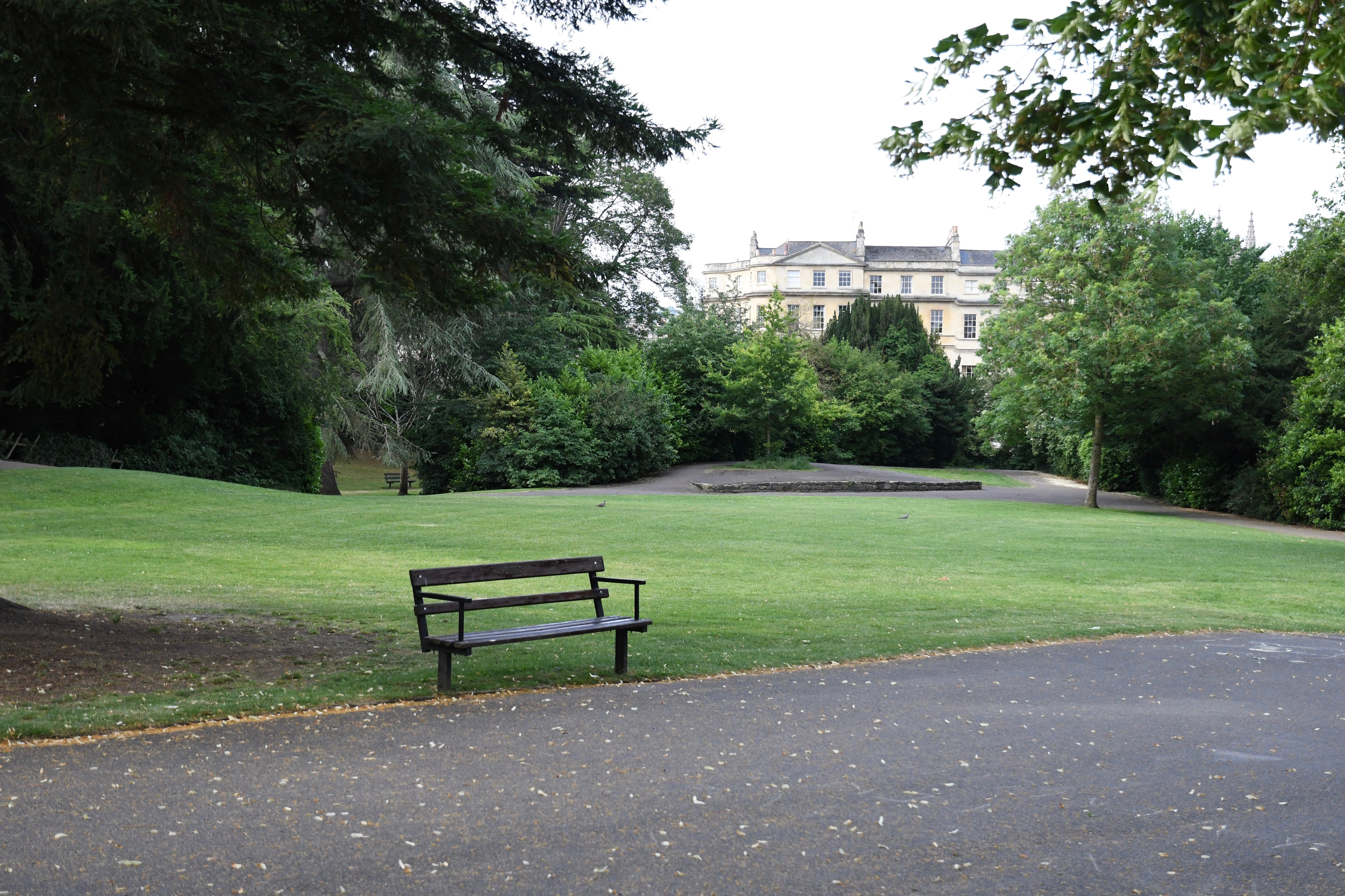 Sydney gardens bench