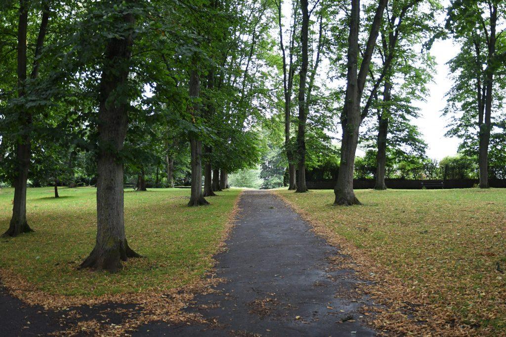 Bristol park trees