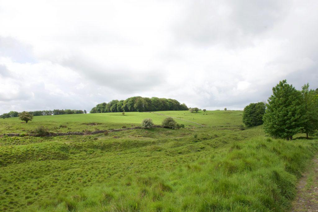Velvet Bottom in Somerset.