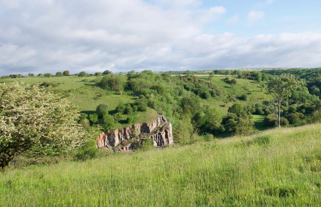 Black Rock, Somerset.  Cheddar Gorge dog walking.